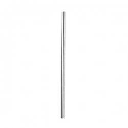 Canudo reto Em Inox Personalizado - 21,15 cm